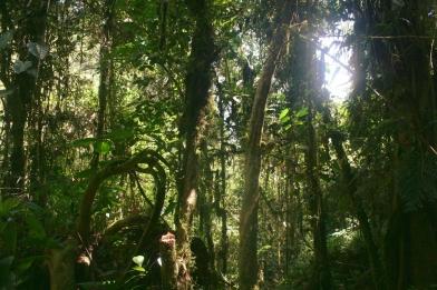 Blog_Peru 153