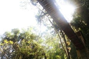 Blog_Peru 164